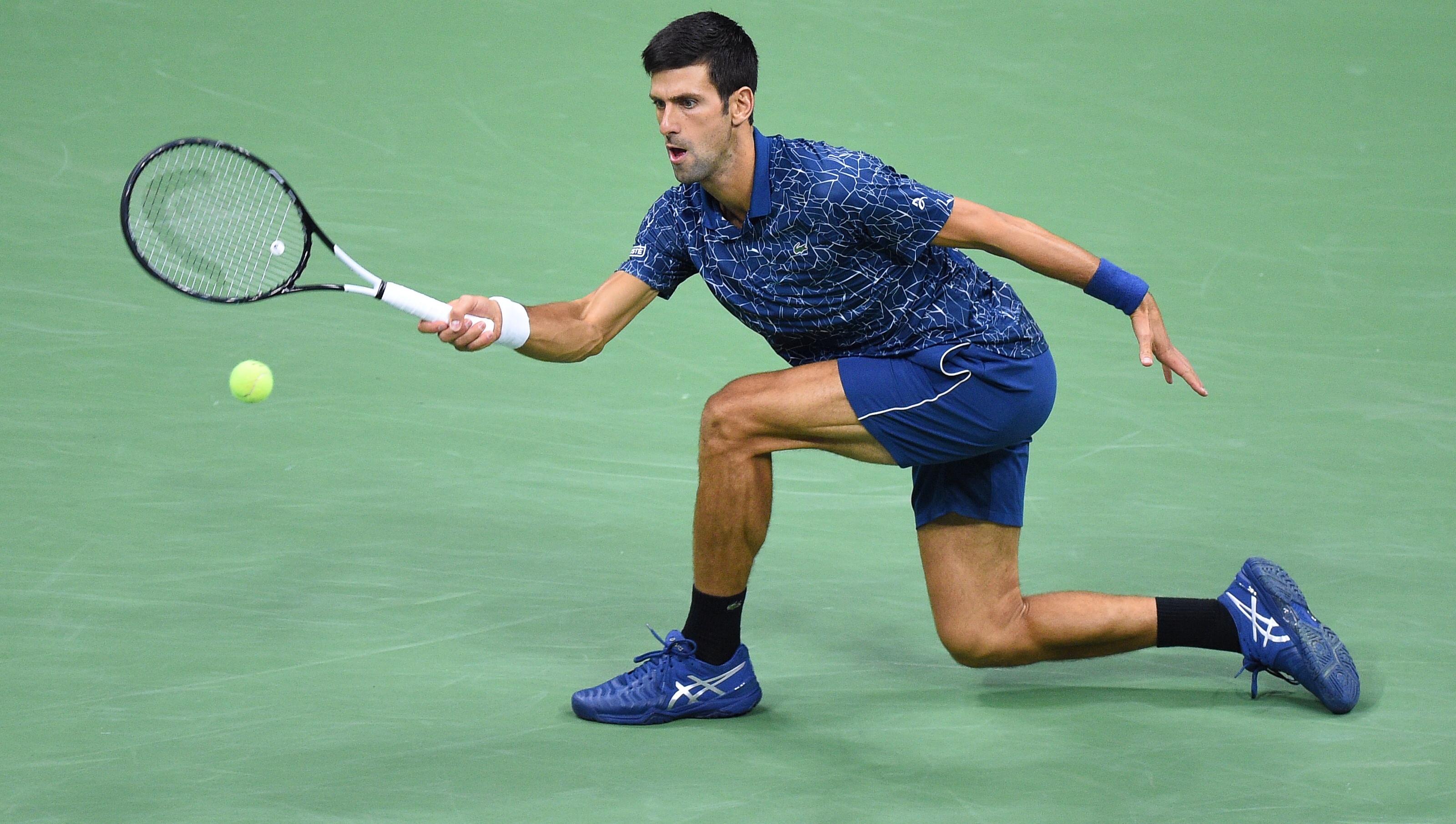 Hasil gambar untuk Djokovic with tiger shoes