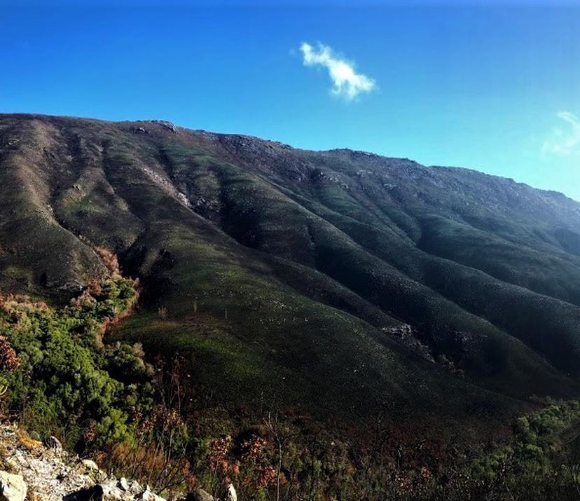 Sleeping Beauty Trail run1