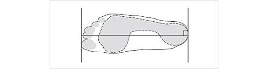 長 測り さ 方 足 の