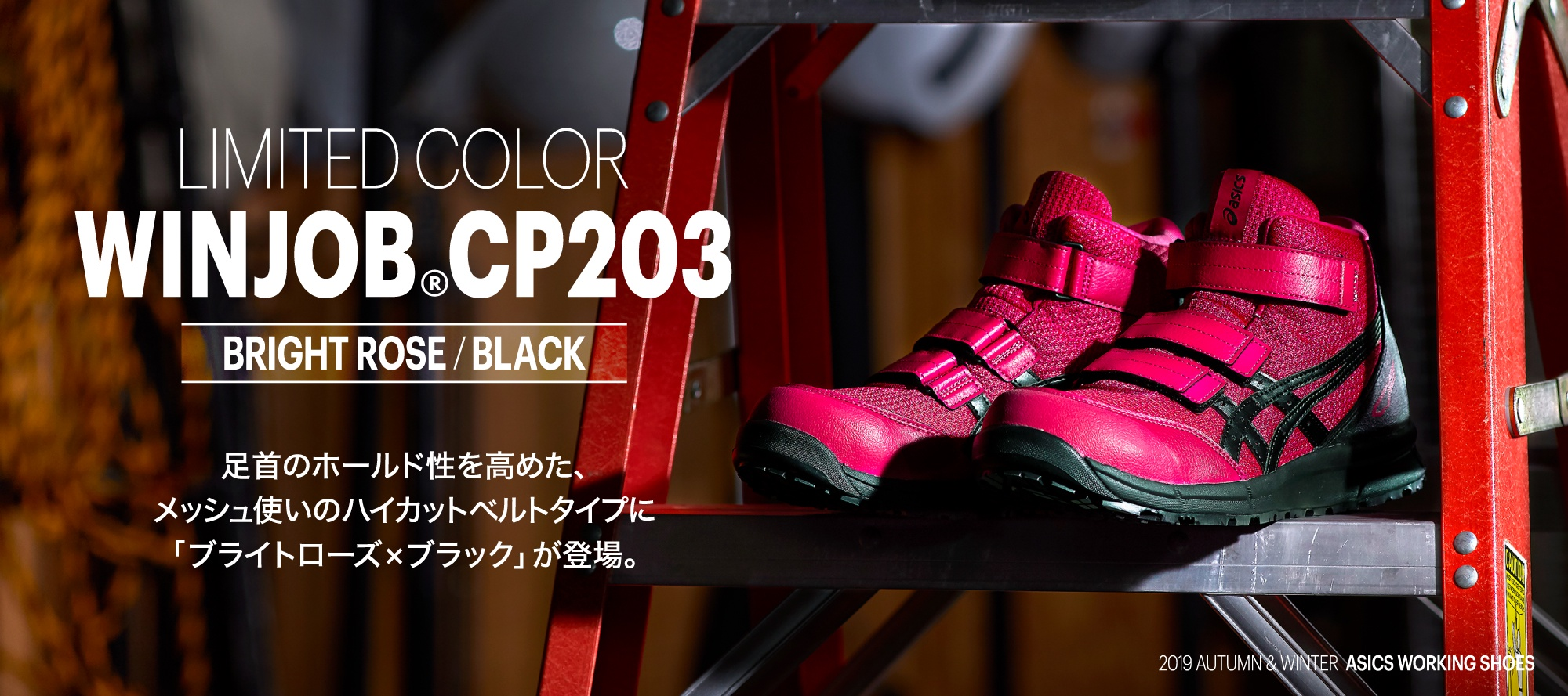 LIMITED COLOR WINJOB®CP203 BRIGHT ROSE / BLACK