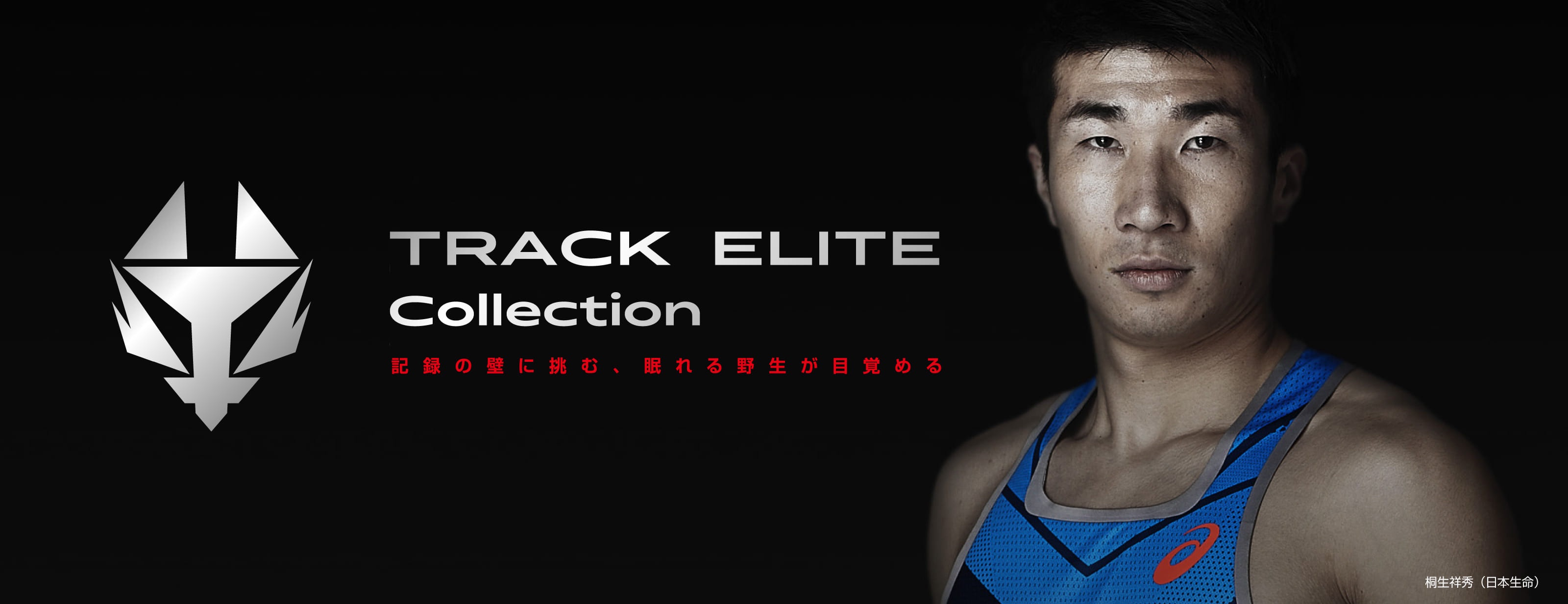 T&F track elite hero pc