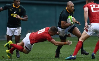 Bok coach finds the positive in Test match experience